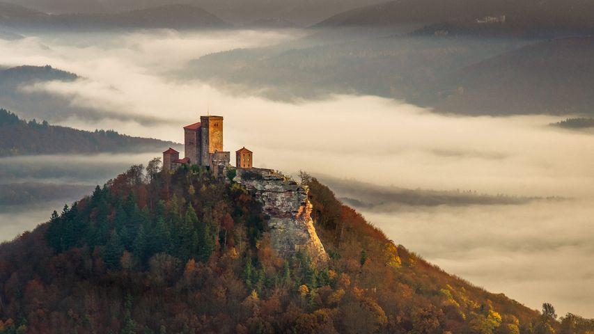 秋日雾中清晨里的特里斐斯城堡,德国莱茵兰普法尔茨森林