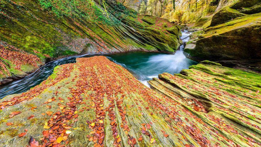 River running through Cheran Gorges, Alps, Savoie, France