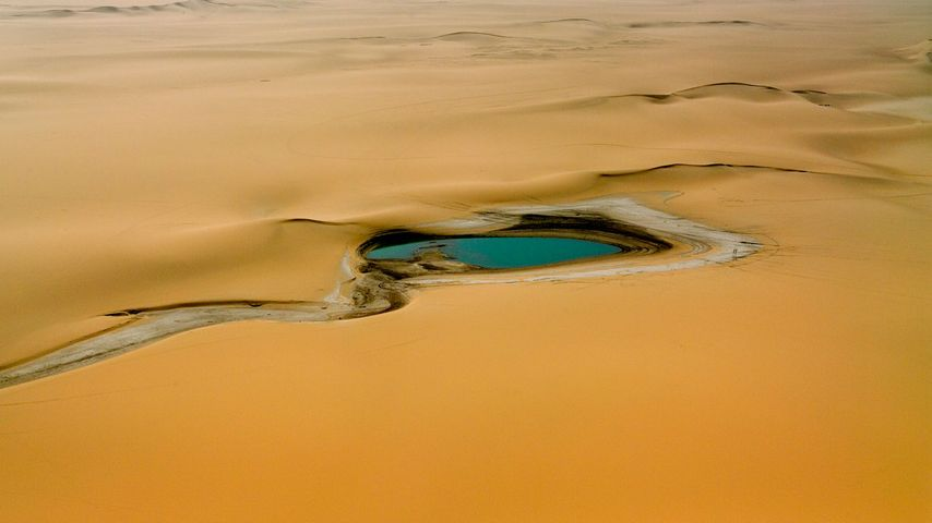 Accumulation of rain water in the Sahara Desert, east of the Aïr Mountains, Niger