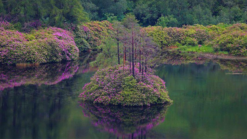 Small loch in Glen Etive, Scotland