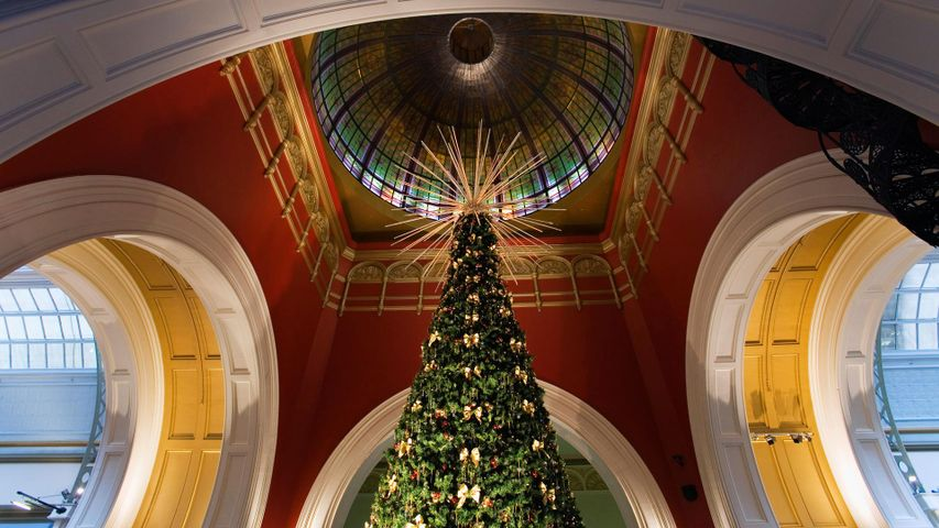 Christmas tree under the dome of the Queen Victoria Building, Sydney