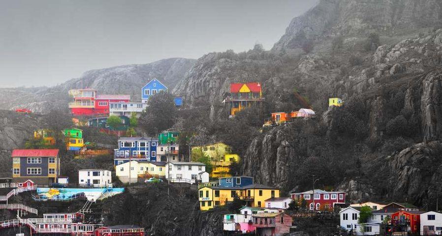 Multi colored homes along shoreline of St. John's, Newfoundland and Labrador, Canada