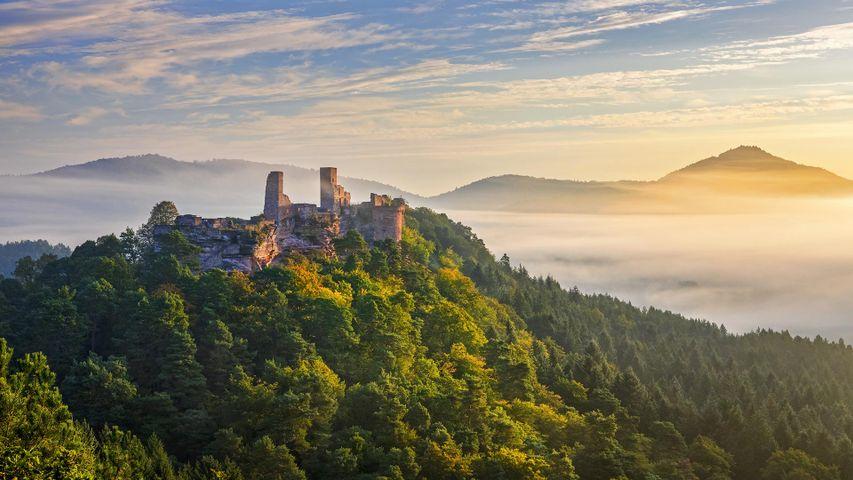Burg Altdahn in der Nähe von Dahn, Rheinland-Pfalz, Germany