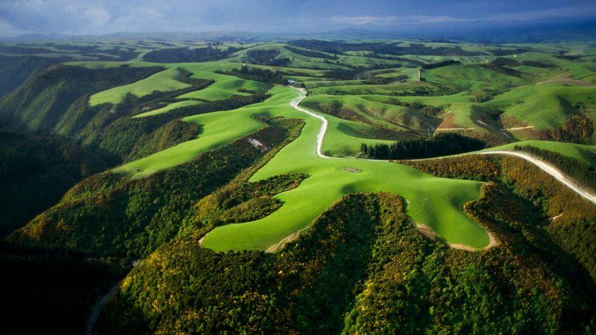 新西兰,农业耕地的俯视图