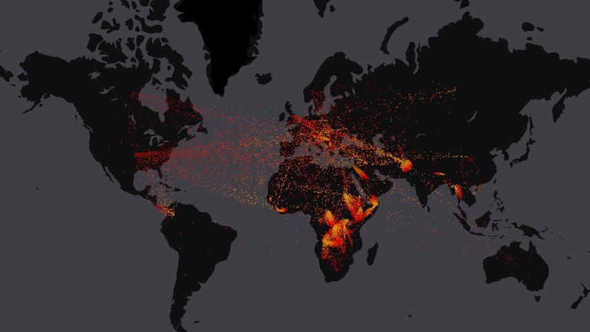 2000年到2016年间全球难民的流动情况