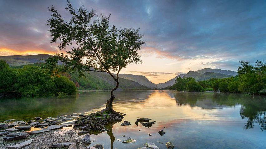Sunrise at Llyn Padarn at Llanberis, Snowdonia National Park