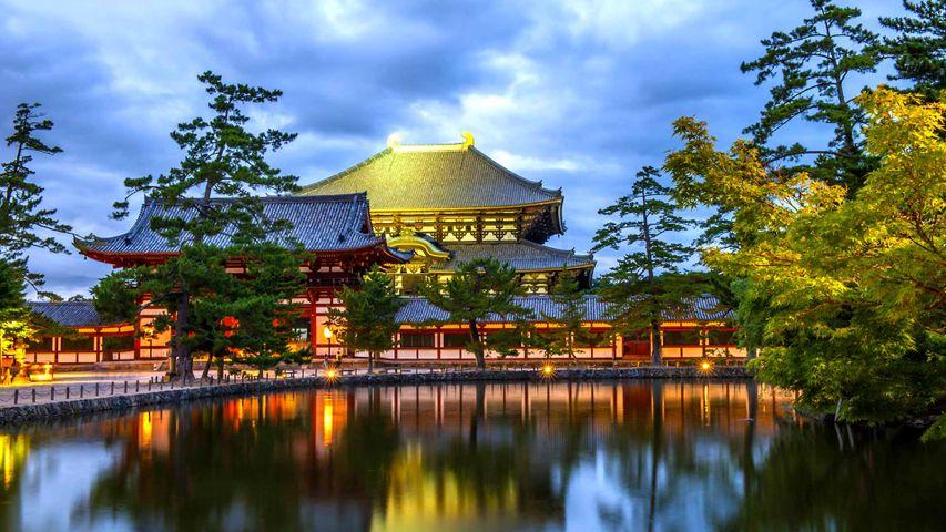 「東大寺大仏殿と鏡池」奈良