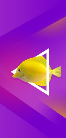 clipart fish creativity art design abstract animal