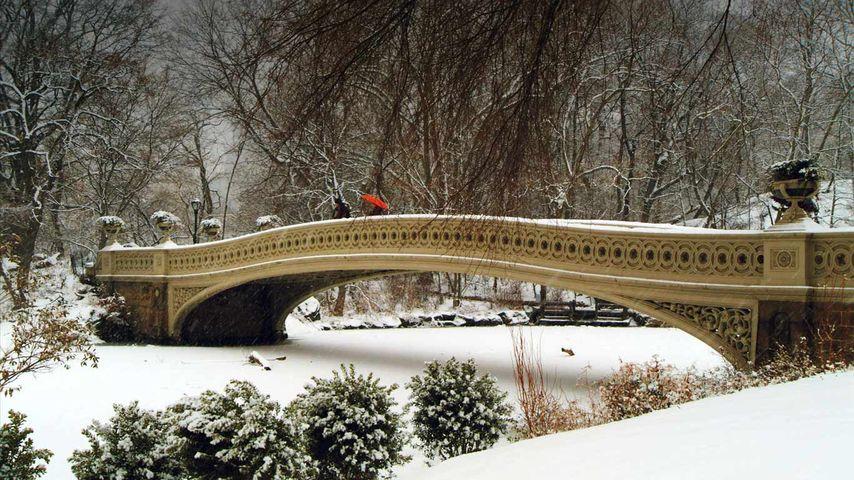 纽约州纽约市,中央公园的弓桥