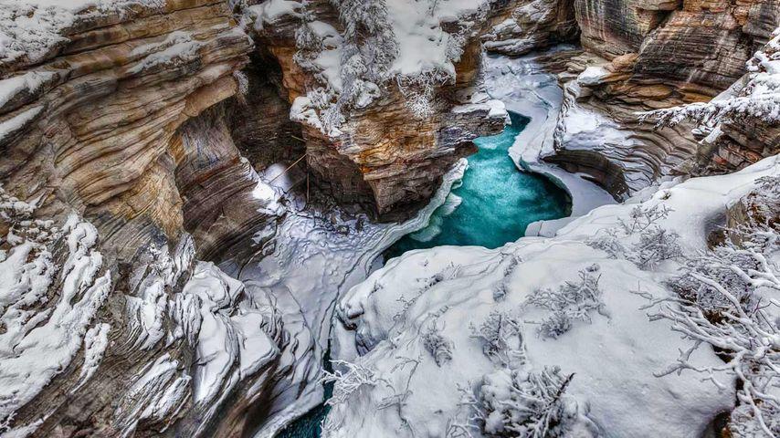 贾斯珀国家公园的阿萨巴斯卡河,加拿大