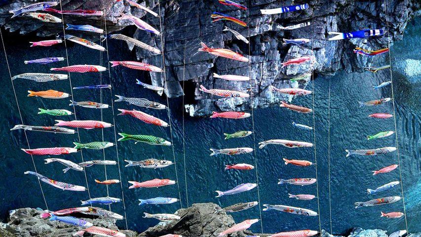 「大歩危峡のこいのぼり」徳島県, 三好市