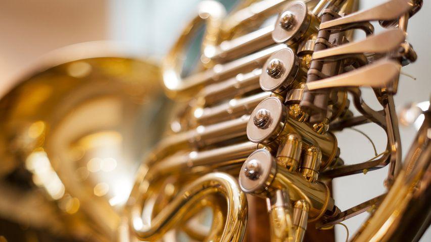 Plan rapproché d'un cor d'harmonie