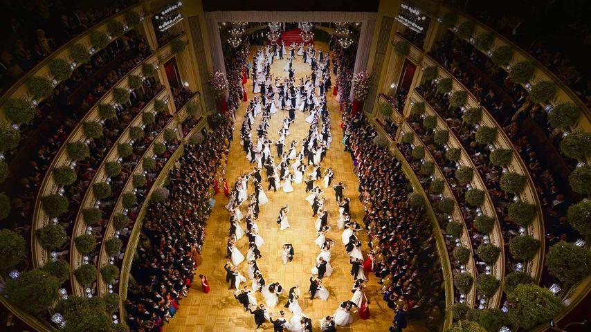 维也纳国家歌剧院内的舞会,奥地利
