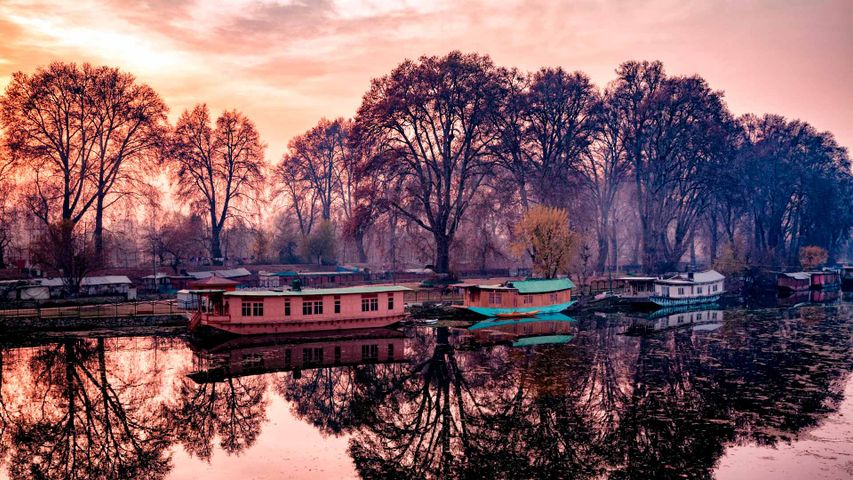 Houseboats parked on the banks of Jhelum River, Kashmir