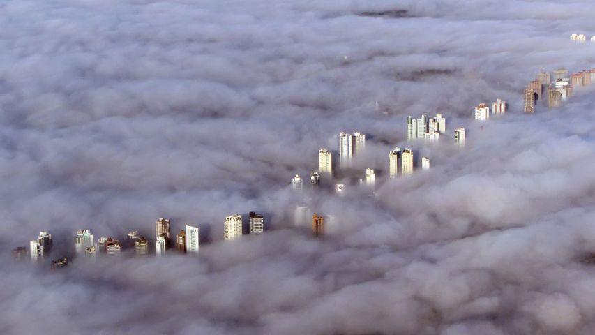 「霧に覆われるクリチバ」ブラジル, パラナ州