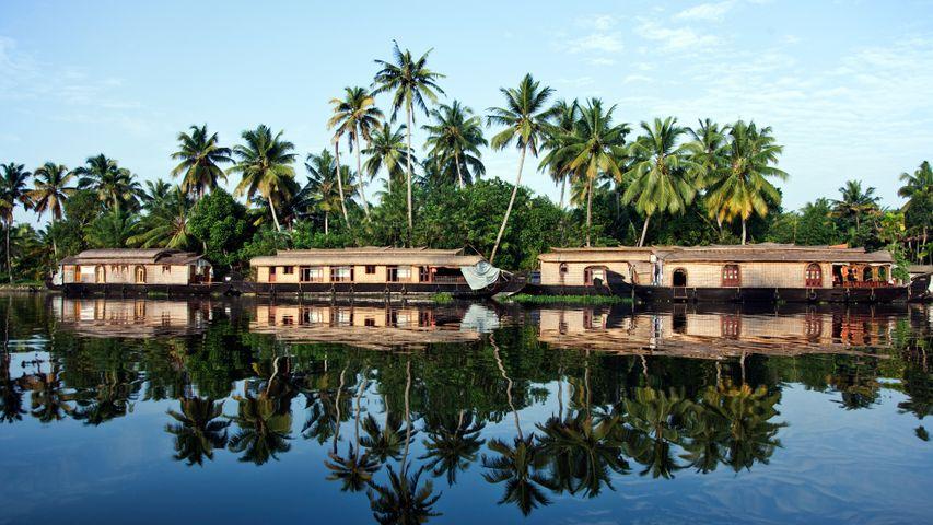 阿拉普扎的船屋,印度喀拉拉邦