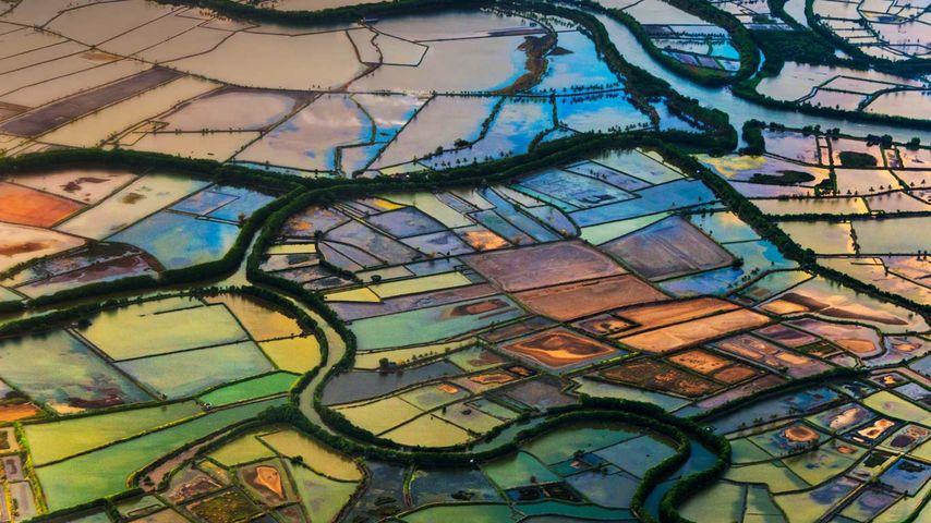 Farmland in Makassar, South Sulawesi, Indonesia