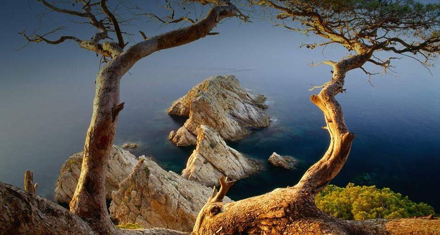 西班牙多沙海岸的地中海
