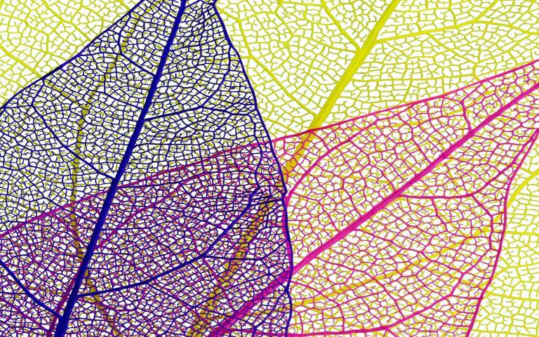 map art text abstract net pattern design