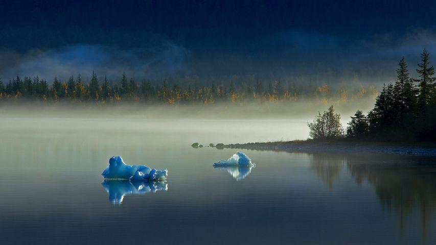 Eisberge auf dem Gletschersee Mendenhall Lake in der Nähe von Juneau, Alaska, USA