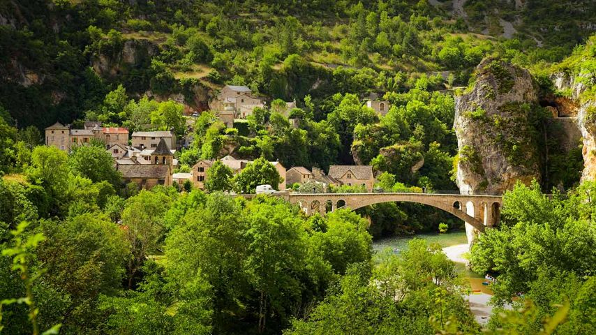 Gorges of Tarn in Cévennes National Park, Languedoc-Roussillon, France