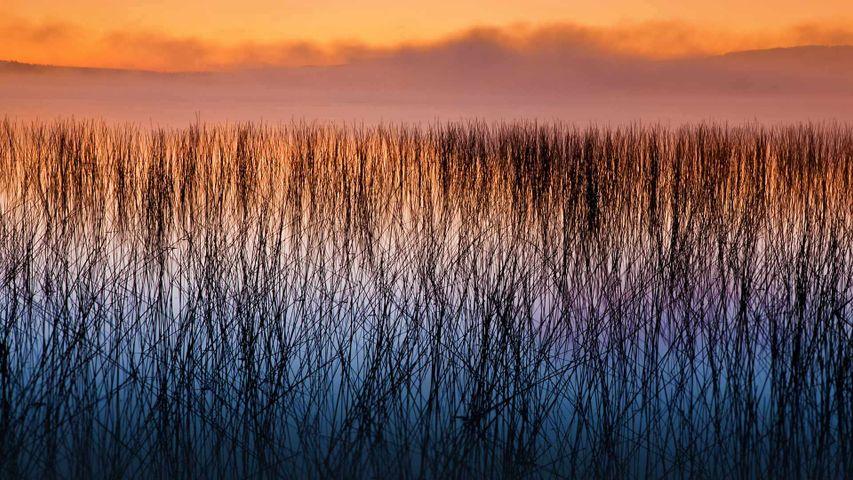 The Headwaters Wilderness in Wisconsin