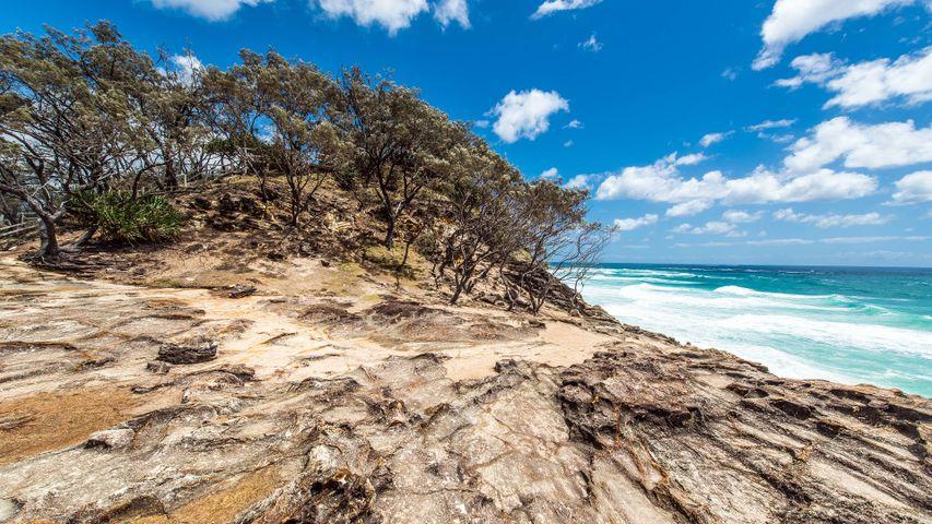 outdoor sky beach ground water rock tree cloud