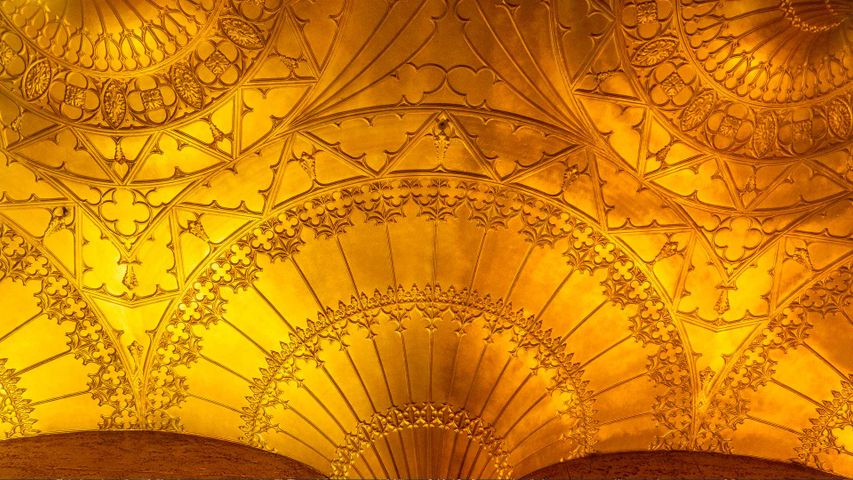 Fan vaulted ceiling of the foyer of the State Theatre, Sydney