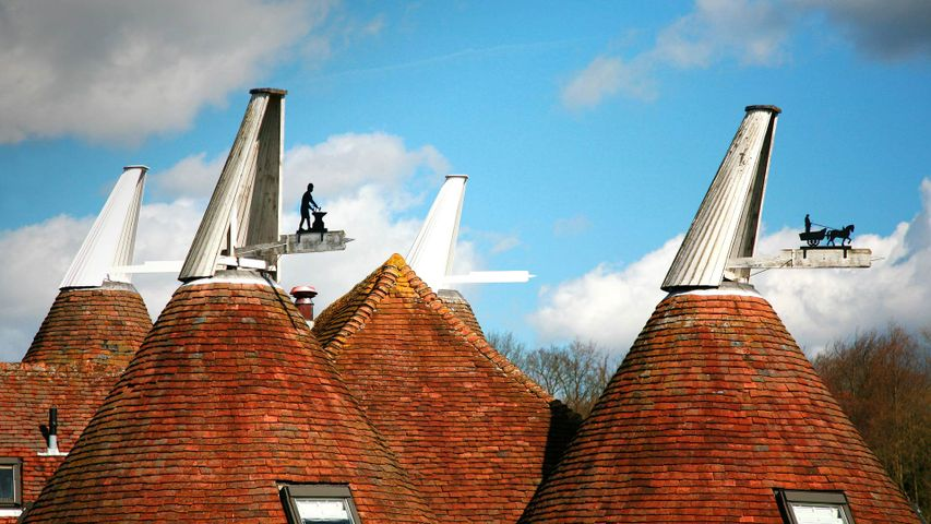 Oast house roofs with wind vanes decorated with agricultural scenes on a farm in Kent