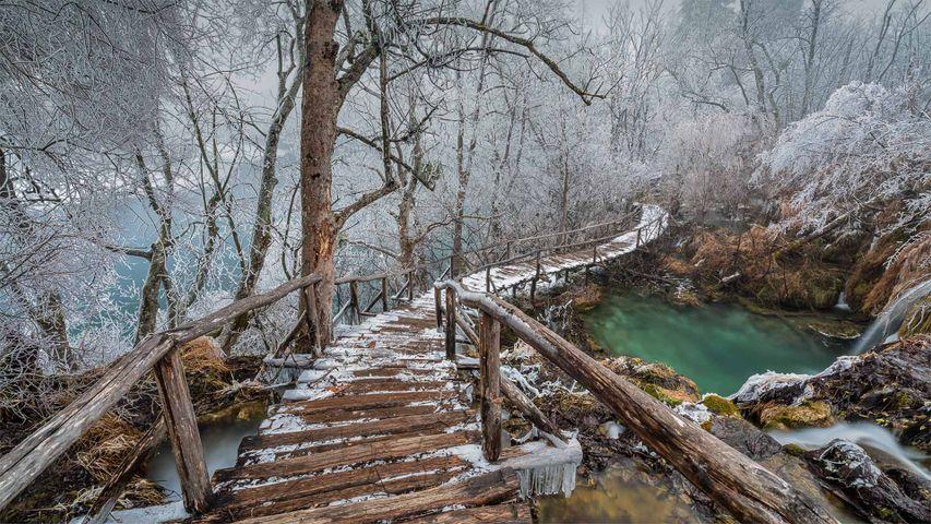 普利特维采湖群国家公园中的高架步道,克罗地亚