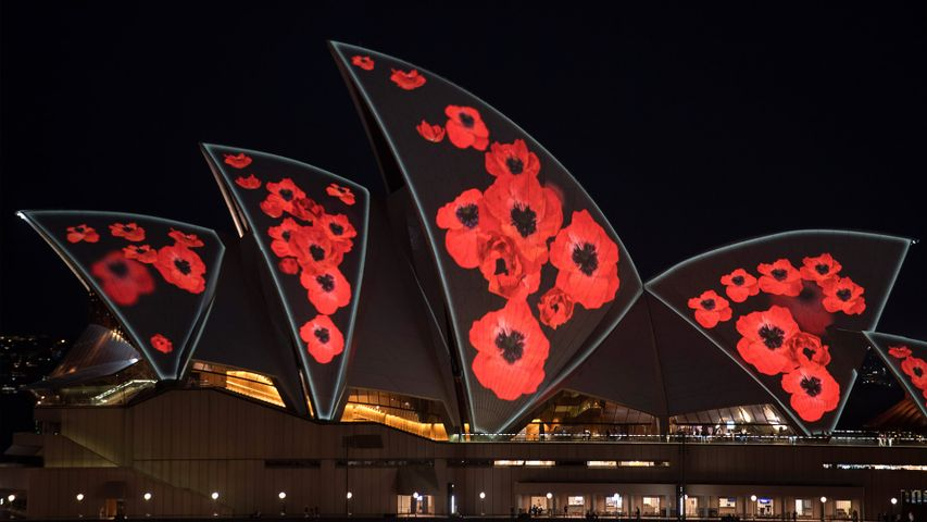 Poppies projected on the Sydney Opera House sails to mark Remembrance Day