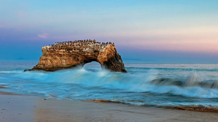 Natural Bridges State Beach, Santa Cruz, California