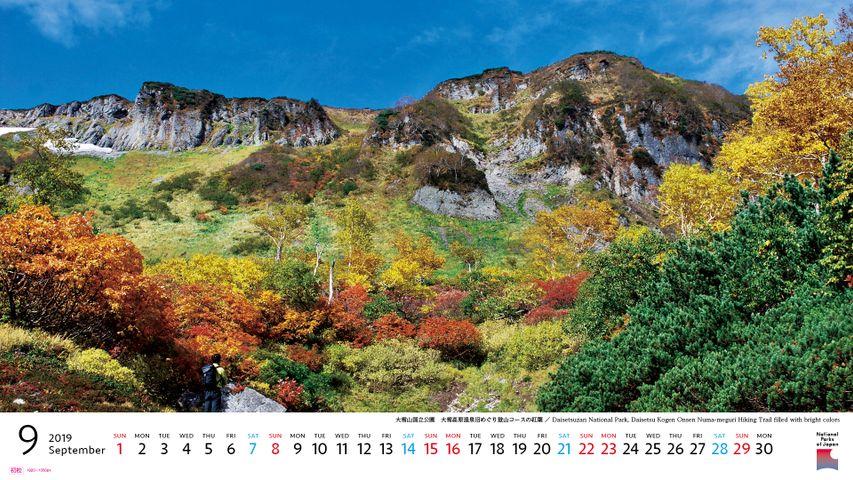 tree outdoor mountain hillside autumn landscape nature travel