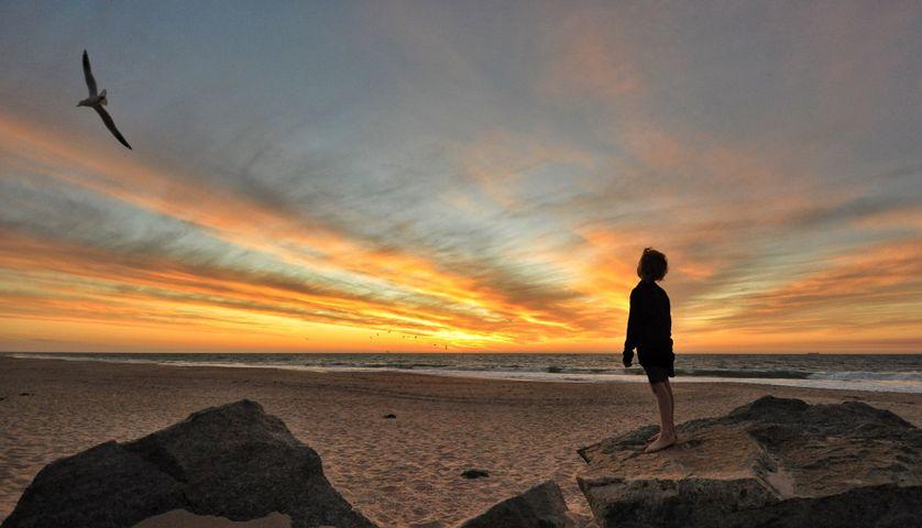 outdoor sky water cloud beach sunset person sun