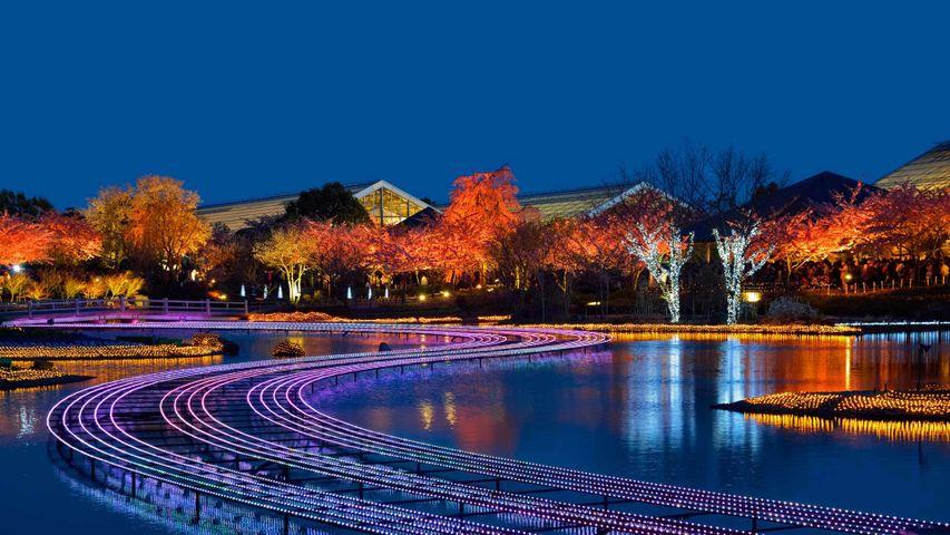 Winter-Illumination im Nabana-No-Sato-Blumenpark, Freizeitpark Nagashima, Kuwana, Japan