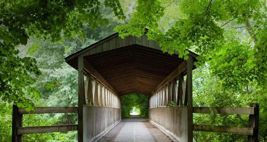 「ブラック川の屋根付き橋」アメリカ, ミシガン州
