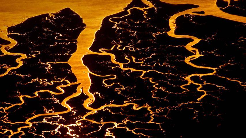 Suwannee River delta, Florida