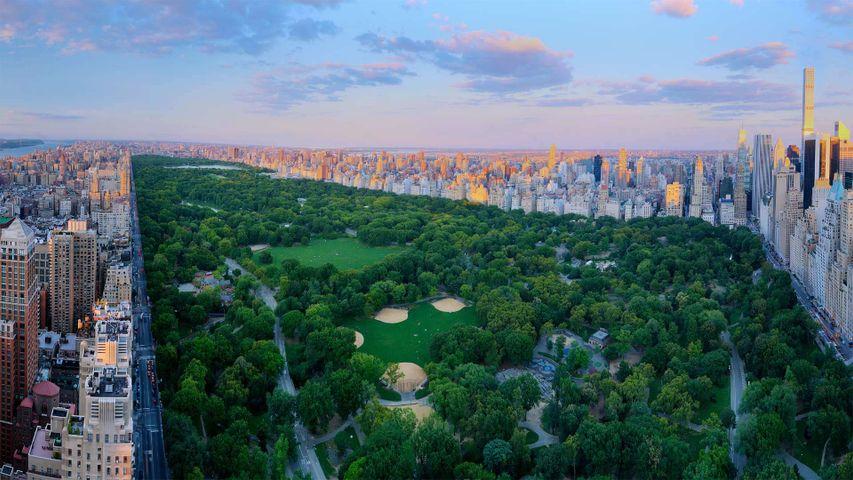Panorámica de Central Park, Nueva York