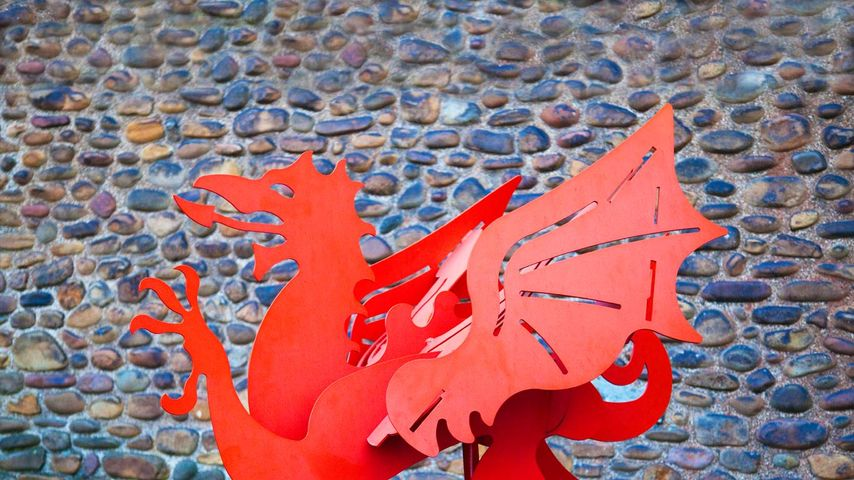 The Welsh Dragon outside Cardiff Castle