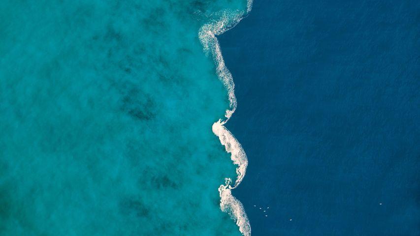 Fresh water and salt water mix at the Ter River estuary near L'Estartit, Spain