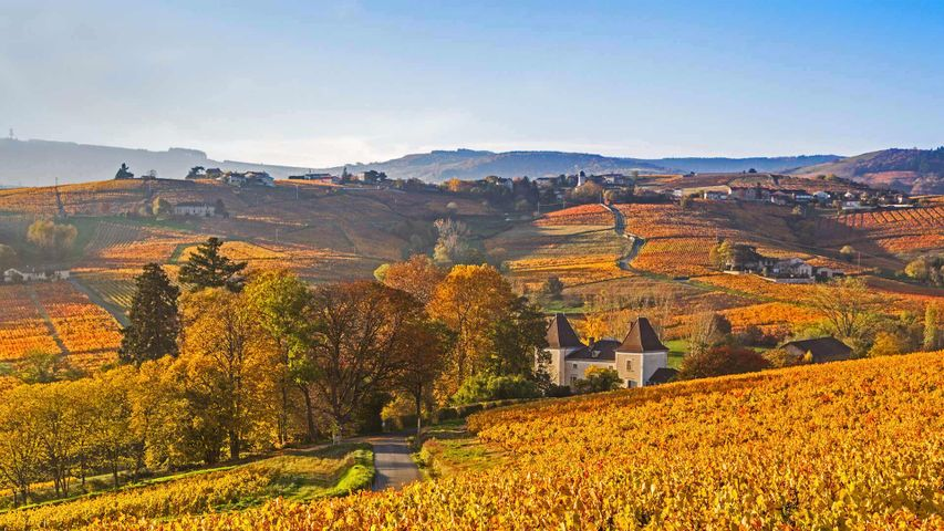 Lantignié in the Beaujolais region of France