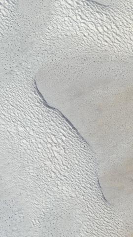 nature sand animal beach footprint abstract winter