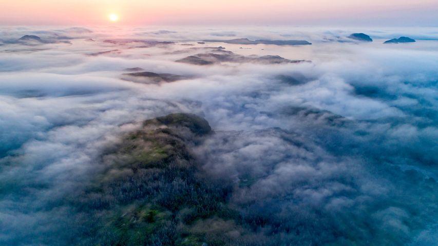 沿海的雾,加拿大纽芬兰