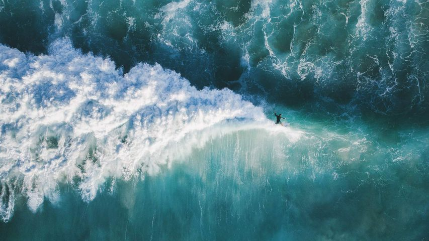 High-angle view of man surfing in the sea, New South Wales