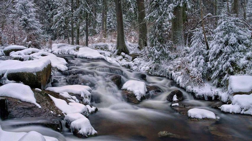 Der Untere Bodewasserfall bei Braunlage im Harz, Niedersachsen, Deutschland