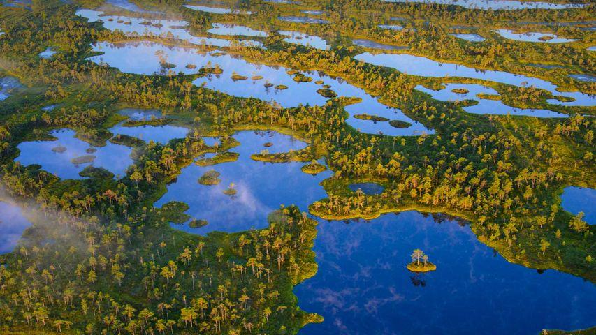 凯迈里国家公园,拉脱维亚