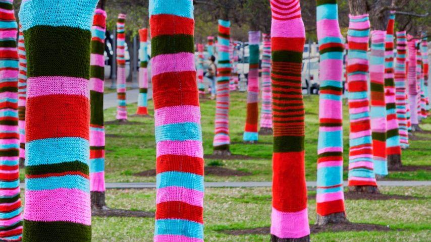 Trees in sweaters, Blanton Museum Of Art, University Of Texas, Austin, Texas
