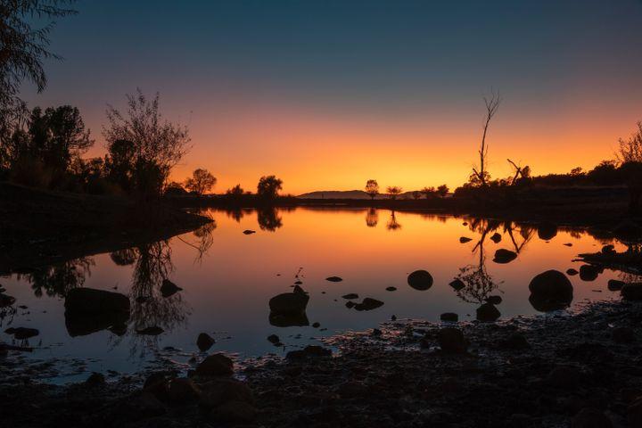 tree outdoor lake sky sunset water landscape light