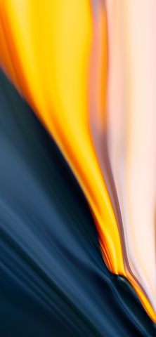 closeup bright orange light flower abstract blur colorfulness