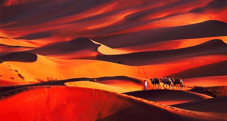 携程&MSN十年旅行摄影大赛作品精选:新疆塔克拉玛干沙漠